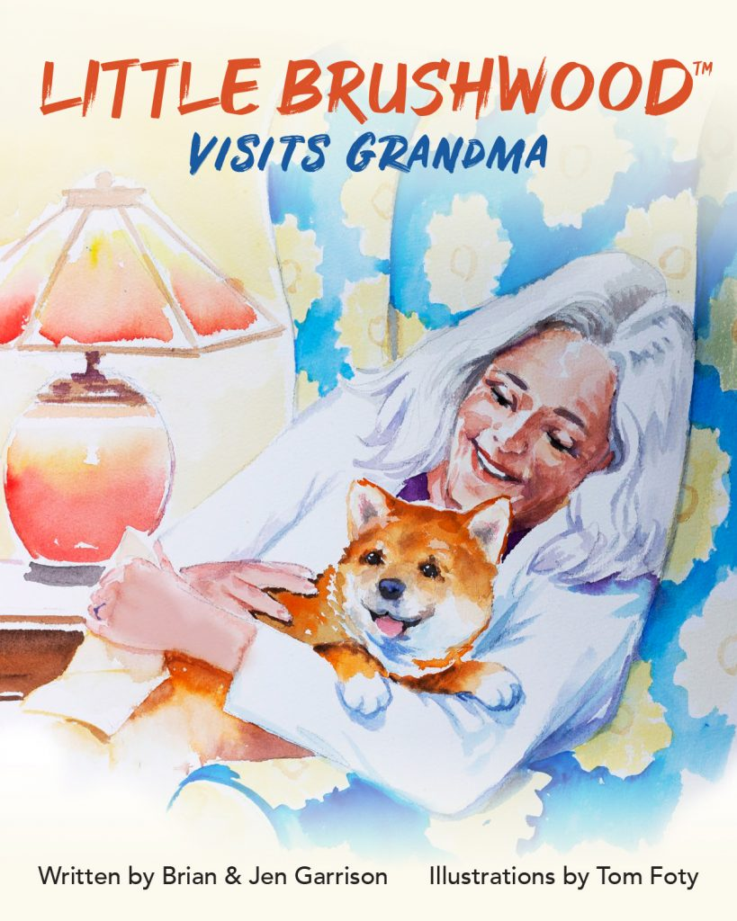 Little Brushwood Visits Grandma book cover